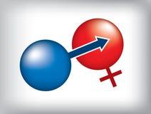 könsbestämma tecknet Fotografering för Bildbyråer