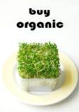 köp organiskt arkivfoto