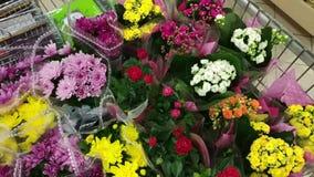Köpande blomma inom supermarket Många grupper av röda, rosa gula blommor i blommor shoppar Lott av mångfärgade buketter arkivfilmer