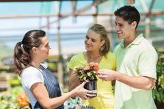 Köpande blommor för par Royaltyfri Foto