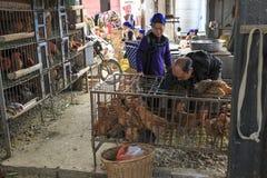 Köpande material för Hani folk i Shengcun den lokala marknaden i YuanYang Hani är en av de 56 minoriteterna i Kina och är infödin Royaltyfri Foto