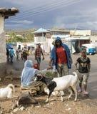 Köpande Qat i Etiopien Arkivbild