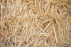 Köper naturlig guling och brunt för höstackbakgrund vete arkivfoton