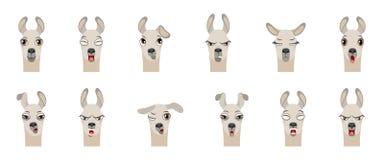 Köpfe des Lamas mit verschiedenen Gefühlen - lächelnd, traurig, Ärger, Angriff, Schläfrigkeit, Ermüdung, Bosheit, Überraschung, F stock abbildung