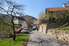 Köping av Weissenkirchen-isom omges med terrasserade vingårdar Wachau-dal lägre Aust Royaltyfri Fotografi