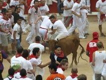Köra av tjurarna i Pamplona Royaltyfria Foton