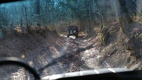 Köra av-väg bilthrogh en skog som kör gammalmodiga av-väg jeepar Slät längd i fot räknat från av vägmedlet kamera arkivfilmer