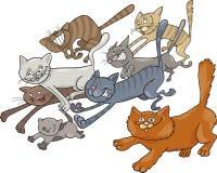 köra för katter royaltyfri illustrationer