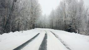 Köra till och med vinterskogen på den snöig vägen, första sikt Kamera utanför fönstret på steadicam Körning av pov på lager videofilmer