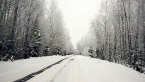 Köra till och med vinterskogen på den snöig vägen, första sikt Kamera utanför fönstret på steadicam Vinterlandskap in stock video