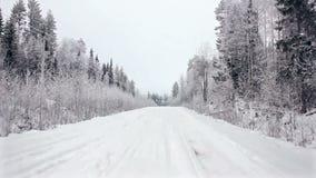 Köra till och med vinterskogen på den snöig vägen, första sikt Kamera utanför fönstret på steadicam Vinterlandskap in arkivfilmer
