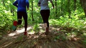 Körande jogga i skogkvinnautbildning, spring som joggar, kondition, runner--4kvideo lager videofilmer