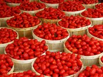 Körbe der Tomaten Stockfotografie
