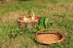 Körbe für Gemüse Stockbild