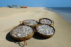 Körbe mit einem Fisch auf Seeküste. Stockfotografie