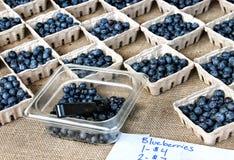 Körbe von Blaubeeren für Verkauf am Markt eines Landwirts Lizenzfreie Stockbilder