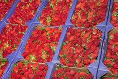 Körbe von Erdbeeren Stockbild
