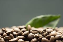 Körner des Kaffees auf einem dunklen Hintergrund Lizenzfreie Stockbilder