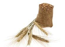 Körner des Weizens in einem Sack Stockbild