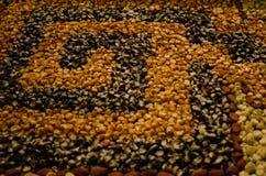 Körner von Mais mit Wassertröpfchennahaufnahme Lizenzfreie Stockfotos