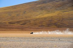 Körning av Altiplanoen av Bolivia royaltyfri fotografi