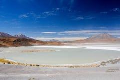 Körning av Altiplanoen av Bolivia royaltyfri foto
