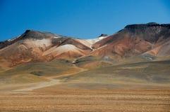 Körning av Altiplanoen av Bolivia fotografering för bildbyråer