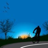Körning av cykeln i natur Royaltyfri Fotografi