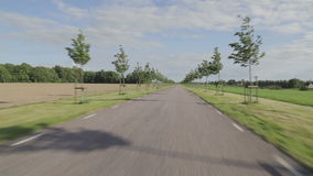 Körning av en bil på en grov asfaltbeläggningväg med små träd