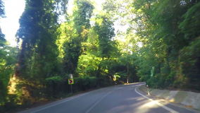 Körning i Forest Road lager videofilmer