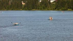 Körning med fartyg och katamaran down floden stock video