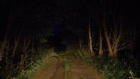 Körning på en dålig lantlig väg i Bush i ljuset av bilbillyktor stock video