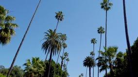 Körning till och med gatorna av Beverly Hills - loppfotografi lager videofilmer