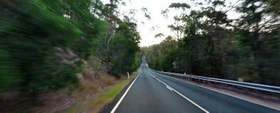 Körning till och med skog i Queensland Australien Arkivbild