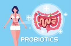 Körper der Frau mit Kapseln Medizin und Auswahlsystem vektor abbildung