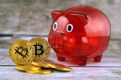 Körperliche Version des neuen virtuellen Geldes und Sparschweins Bitcoin Lizenzfreies Stockbild