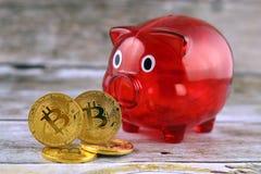 Körperliche Version des neuen virtuellen Geldes und Sparschweins Bitcoin Stockfotografie