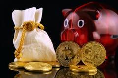 Körperliche Version des neuen virtuellen Geldes und Sparschweins Bitcoin Stockfoto