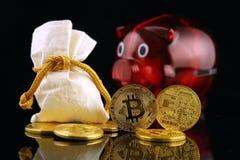 Körperliche Version des neuen virtuellen Geldes und Sparschweins Bitcoin Stockbild