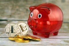 Körperliche Version des neuen virtuellen Geldes und Sparschweins Litecoin Stockfotografie