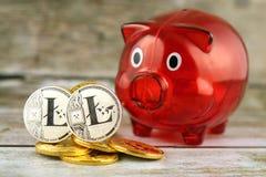 Körperliche Version des neuen virtuellen Geldes und Sparschweins Litecoin Stockbild