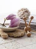 Körperpflegesymbole mit Magnolienblumen Stockbild