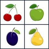 Körsbär Apple, plommon, päron Royaltyfri Fotografi