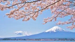 Körsbär-blomningar och Mount Fuji som beskådas från Laka Kawaguchiko i Yamanashi, Japan royaltyfri bild