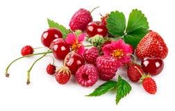 Körsbär för mat för ny bärhallonjordgubbe sund Royaltyfri Fotografi