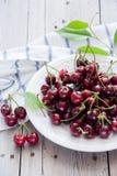Körsbär i en vit maträtt Arkivbild