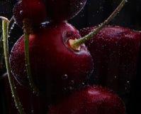 Körsbär i ett exponeringsglas med bubblor royaltyfria foton