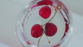 Körsbär i ett exponeringsglas med vatten på en vit bakgrund arkivfilmer