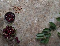 Körsbär i ett muffintenn Royaltyfri Foto