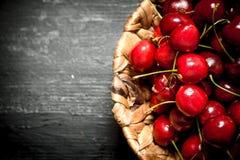 Körsbär i korgen Fotografering för Bildbyråer